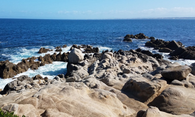 2 Day Itinerary for Monterey, California