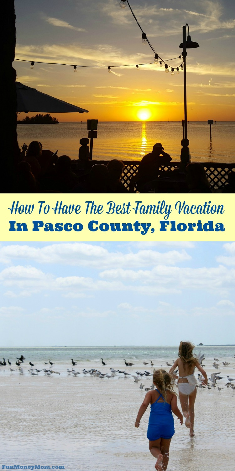 Looking for a new Florida vacation destination? Find out why Pasco County Florida is such a hidden gem.