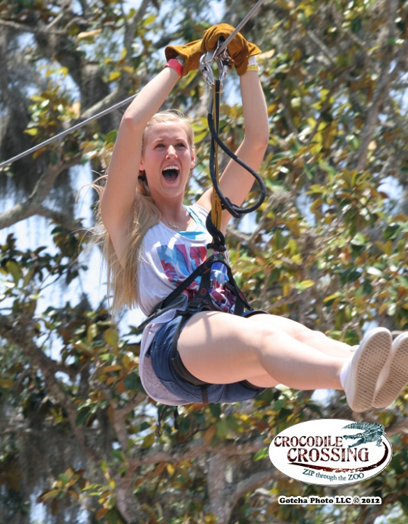 Ziplining at the Alligator Farm.