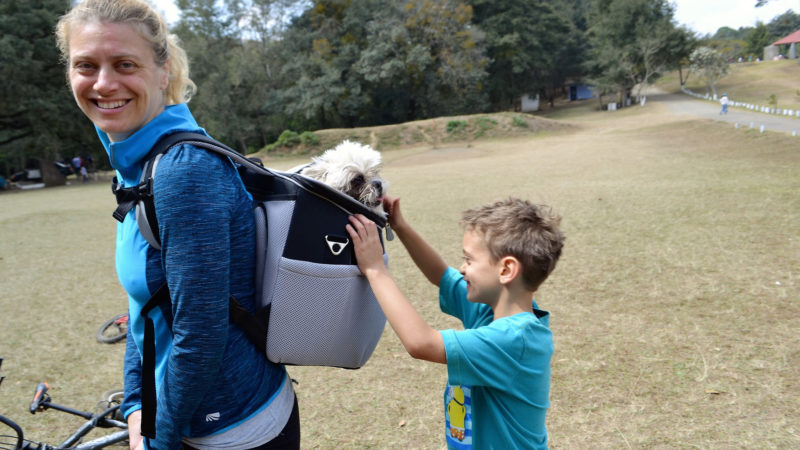 Hiking with Dogs - Read all about how my family and I are able to go out hiking with our little dog without having to hold her all the time.