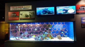 An aquarium exhibit that represents anti-submarine nets used in Pearl Harbor. Exhibit found inside Ripley's Aquarium in Gatlinburg, TN