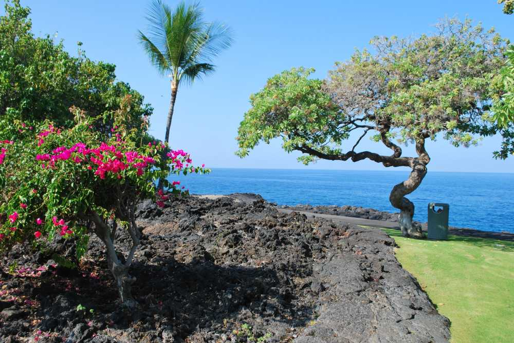 Relax at a family-friendly resort after a day of unique adventures on hawaii island