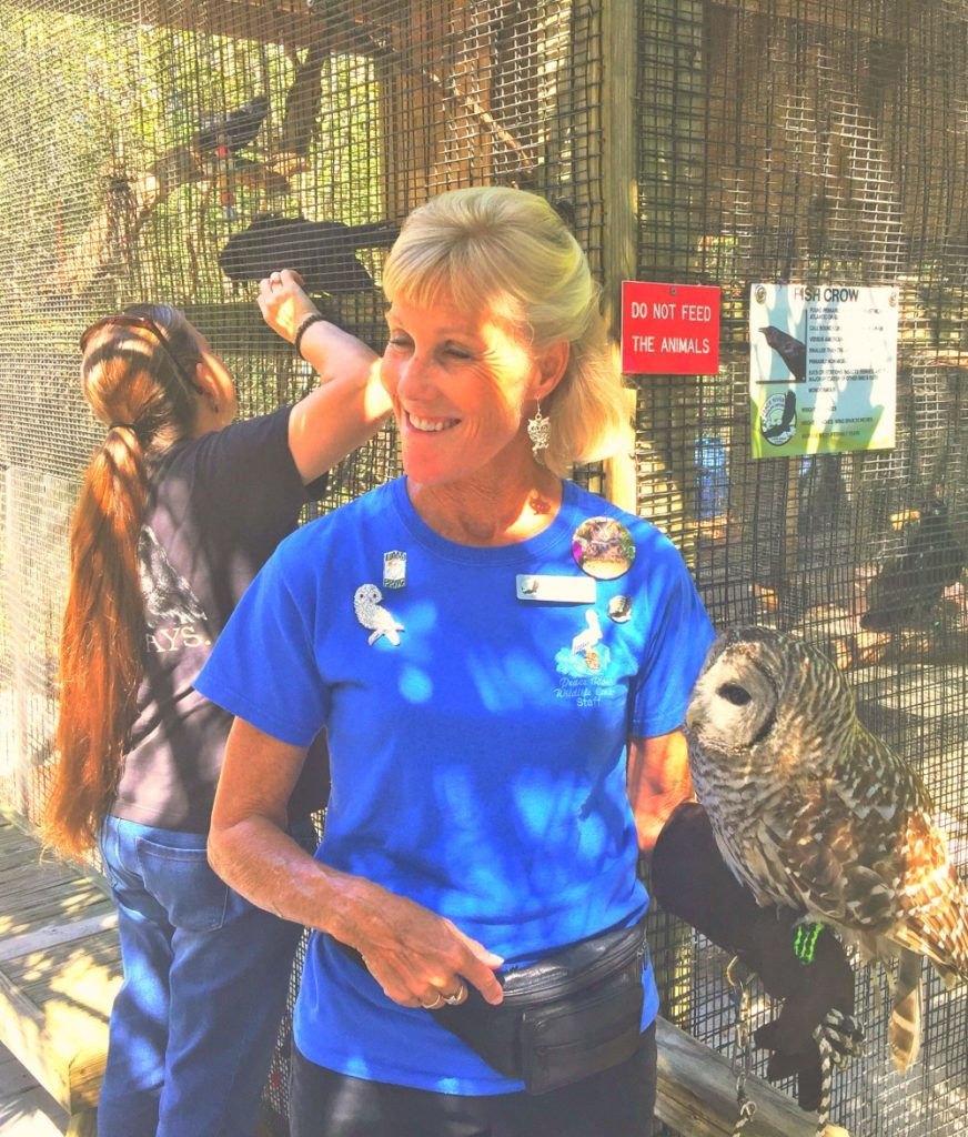 A docent shows off an owl at Peace River Wildlife Center in southwest Florida.
