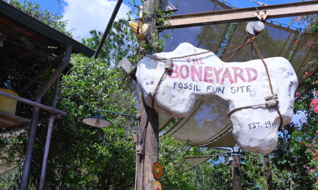 Best Things to Do at Animal Kingdom with Preschoolers