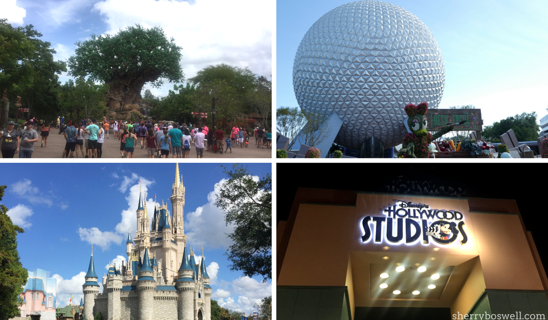 Disney World Dictionary what to know before you go to Disney World 4 parks collage