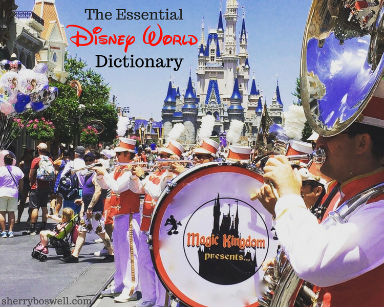 What's a rope drop or a FastPass+? Yes, I'm speaking Disney. Learn the lingo to master your Walt Disney World trip with our Disney World dictionary
