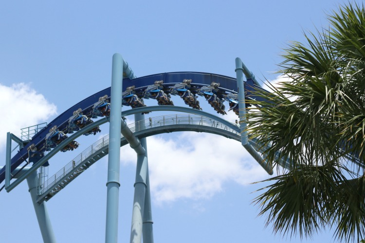 You may be surprised by the number of rides when visiting Sea World Orlando