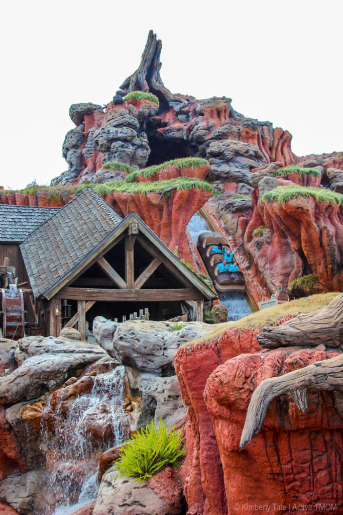 Splash Mountain is one of the best Magic Kingdom rides for bigger kids.