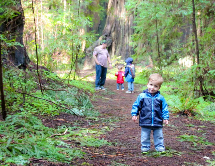 Ready to check out the California Redwoods with your smalls? These five tips for exploring the Redwoods with toddlers will make your trip a giant success.