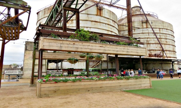 5 Fun Things for Families at Magnolia Market