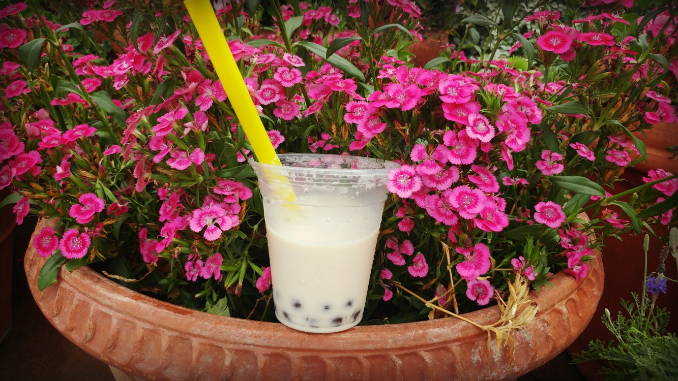 For the best beer in Epcot World Showcase think outside the box in China. The Dragon Pearl is a mix of beer, honey, cream and tapioca pearls. You can only catch it during the Flower and Garden Festival!