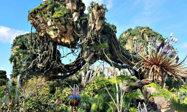 How to Make the Most of One Day at Disney's Animal Kingdom