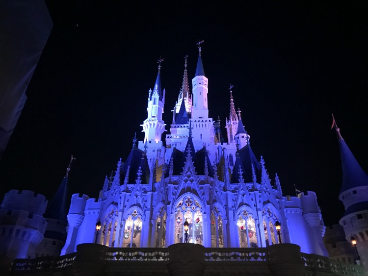 Seeing the parks lit up at night was a fun experience. The right age for Disney World is any age, there is so much to see day and night.