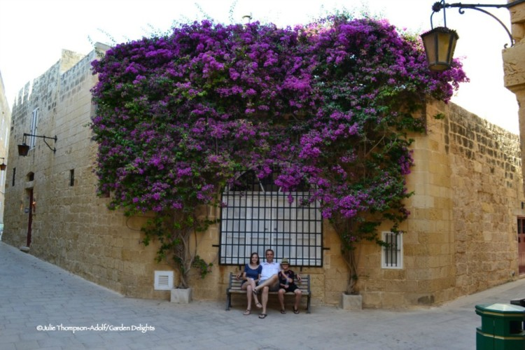 Wandering Mdina is a perfect thing to do in Malta.