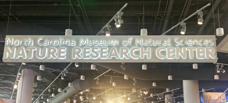 North Carolina Museum of Natural Sciences is just one of the free things to do in Raleigh, NC that families will love.