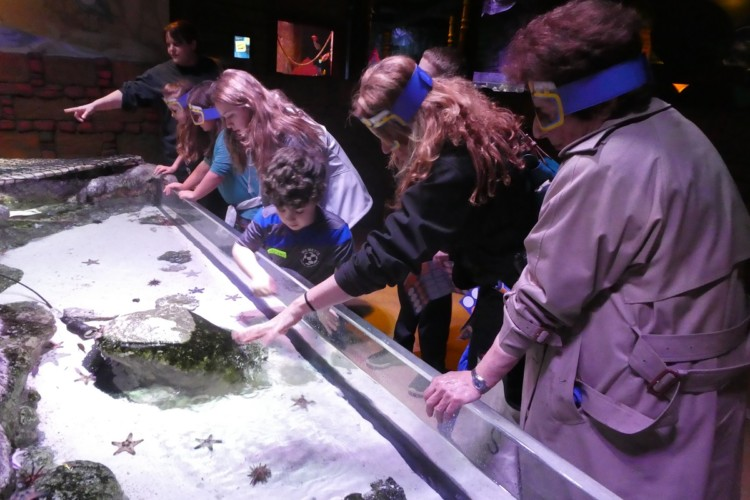 Visit the SEA LIFE Aquarium in Kansas City - fun for all ages on a multi generation vacation.