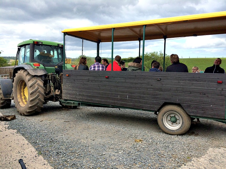 Do your kids love tractors? Put Streamvale Open Farm on your list of things for families in Northern Ireland.