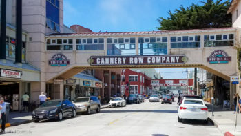 There are plenty of family friendly things to see and do on Cannery Row in Monterey, California. Read on to hear about our favorites!