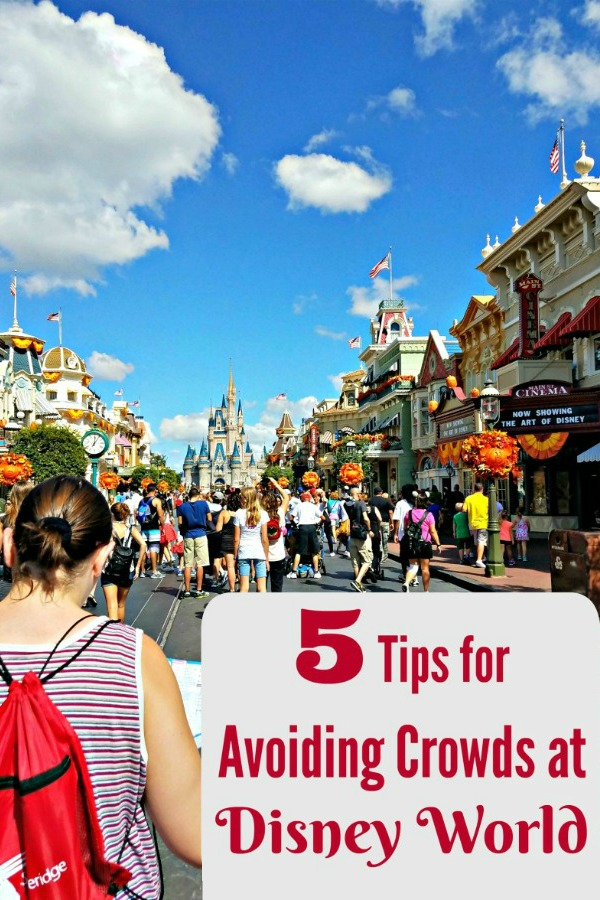 Ready to visit Disney world but don't want to navigate the crowds? Here's five easy tips to help you avoid crowds at Disney!
