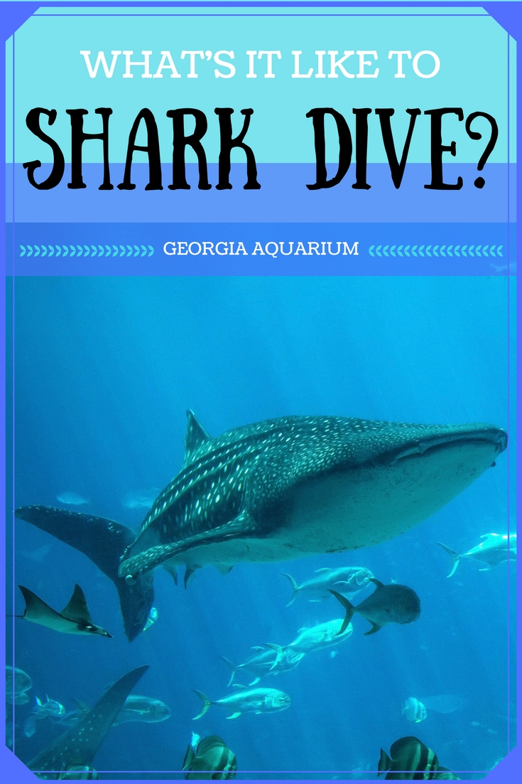 Atlanta's Georgia Aquarium is the best place to dive with sharks in the U.S. What's it like? Fran Capo, holder of the Guinness Book of World Records title for world's fastest talking woman, gives you the view from down below.