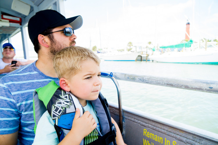 Dolphin and manatee tours give you the chance to see sea life up close.