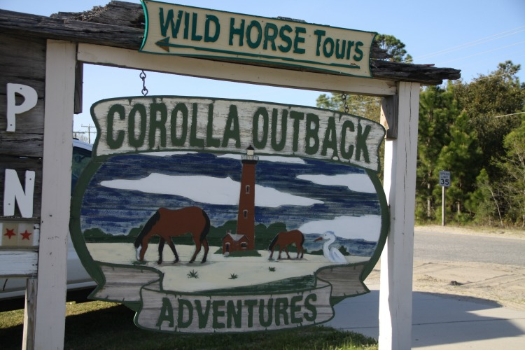 A Wild Horse Tour is a fun family adventure in North Carolina but it might require some patience! Head to the Outer Banks for this inspirational experience.