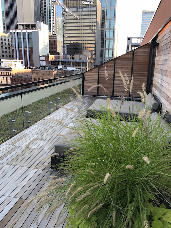 Check out the outdoor space at the 21c Museum Hotel.