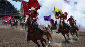 8 ways to do the Calgary Stampede right