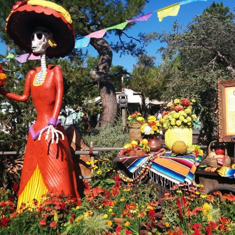 Halloween Time at Disneyland is a treat! Find out what guests can experience during fall at the Disneyland Resort in California.