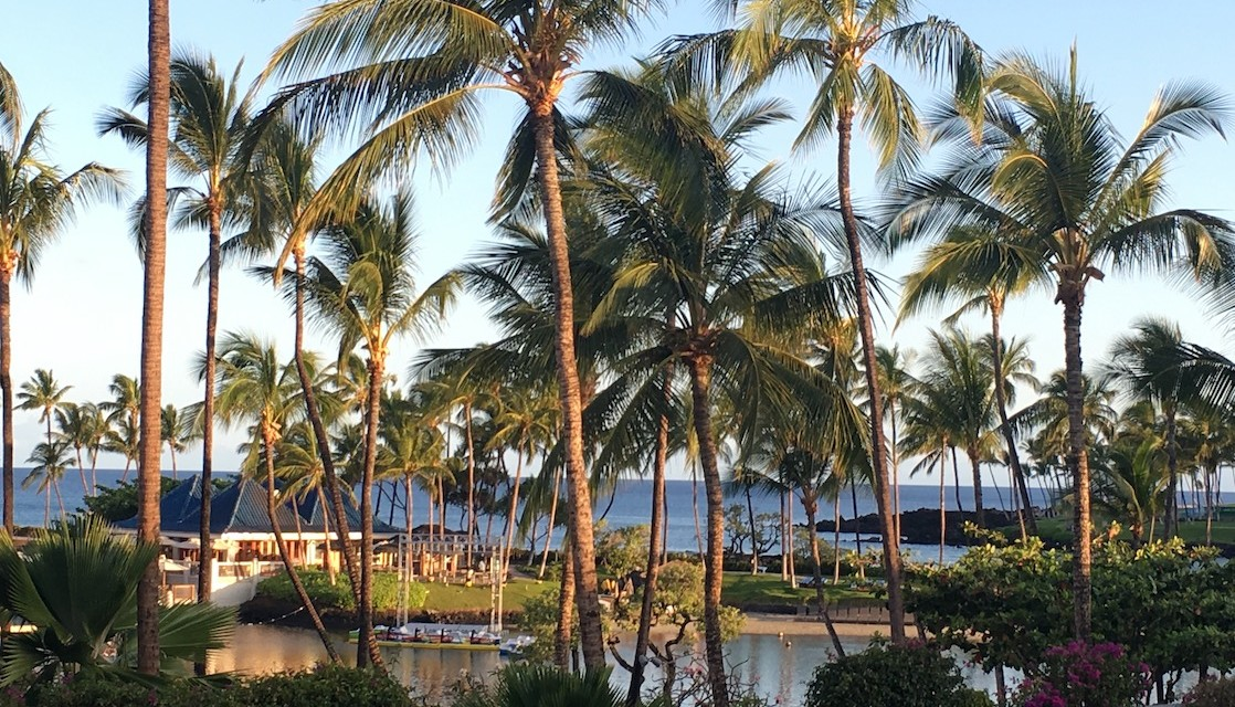 Hawaiian Vacation Paradise: Family Fun at Hilton Waikoloa Village