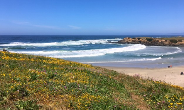 Touring the California Mendocino Coast with Kids
