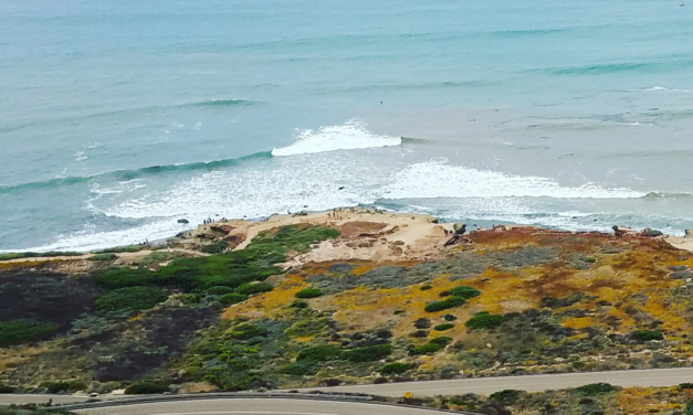 Places to Explore in Point Loma San Diego