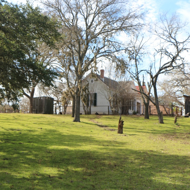 Fredericksburgh, Texas with kids may include a visit to a pretty farmhouse.