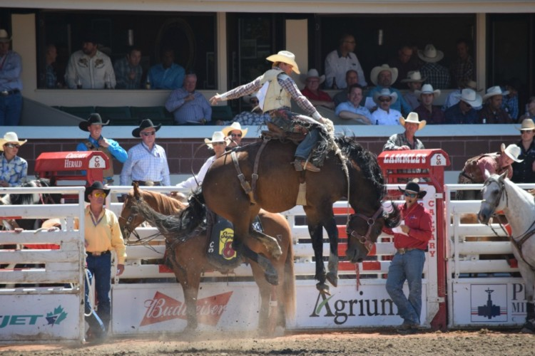 The Calgary Stampede rodeo, one of many ways to do the Calgary Stampede right!