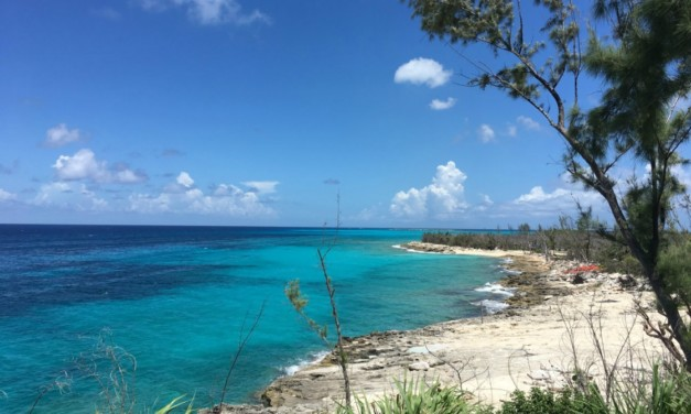The Best Bahamas Beaches: 6 Secluded Spots for Snorkeling Adventures