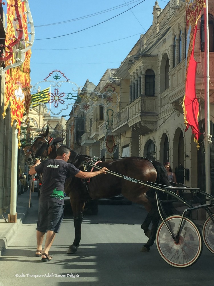 Things to do in Gozo include festivals and horse races.