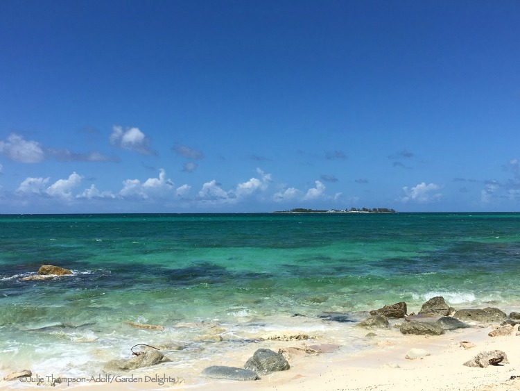 Best Bahamas beaches, like Sandyport, can be found right by the road.