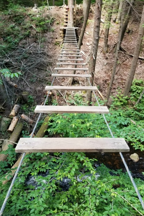 If you're not scared of heights, a treetop adventure course is one of the most exciting things to do when you visit Lake George, NY.