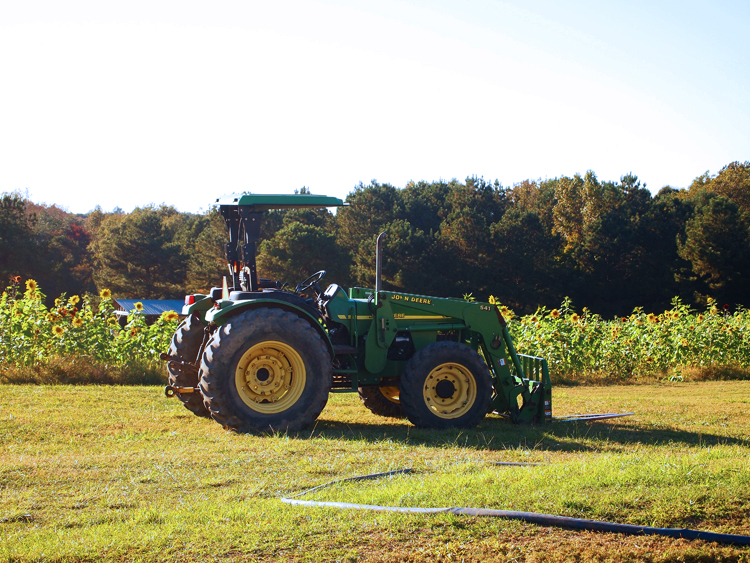 Farms are great places to visit to find the Best Fall Activities for Families in the US