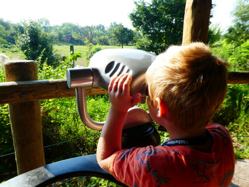 Kid-friendly things to do in Fort Wayne Indiana include a visit to the Children's Zoo.