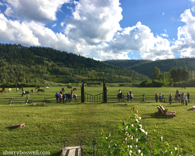 The running of the horses is followed by a meet and greet with the wranglers when Glamping at Goosewing Ranch, Jackon Hole, WY.