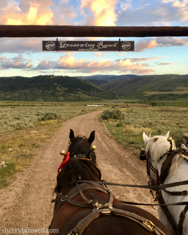 Enjoy a sunset hayride while Glamping at Goosewing Ranch, Jackson Hole, Wyoming.
