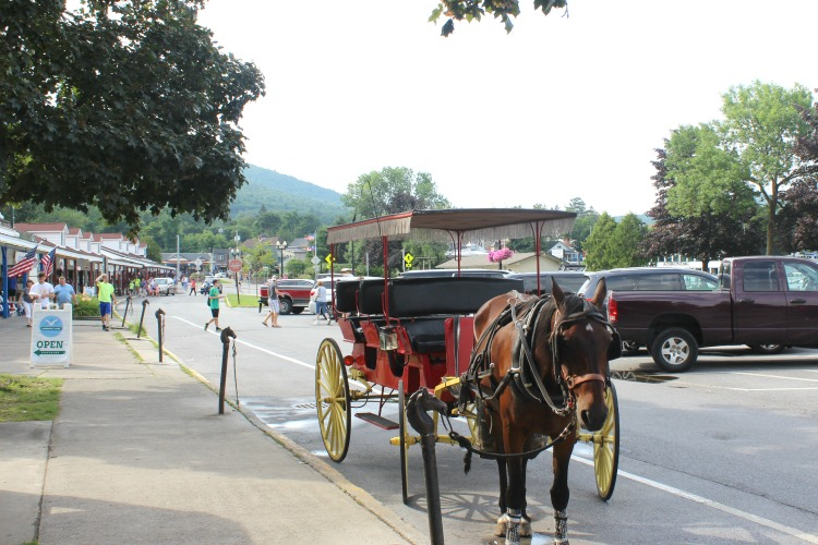 One of the many things to do when you visit Lake George, NY is to take a horse and carriage ride.