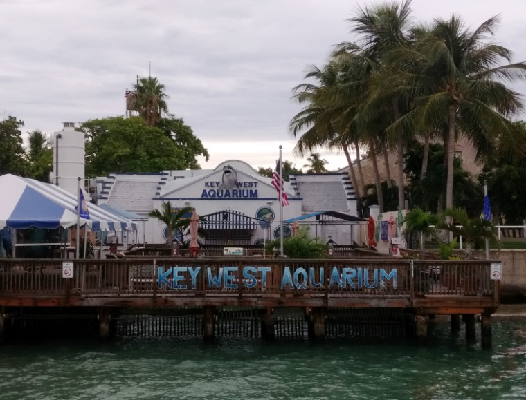 Key West Aquarium was one thing to do in Key West with Teens.