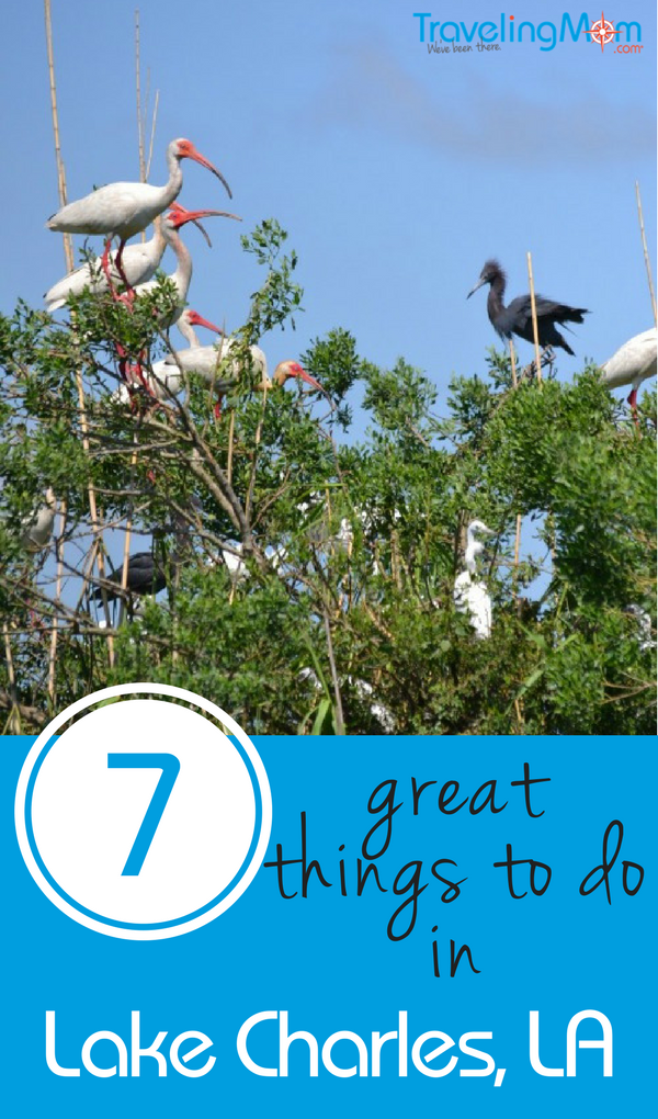 Things to Do in Lake Charles, Louisiana include birding, boating, and beaching--fabulous eco-tourism adventures.