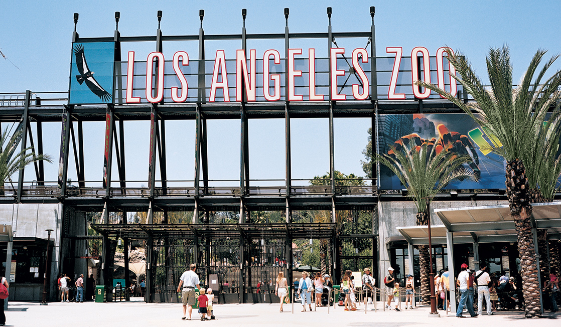 Add LA Zoo to your 3 day itinerary for Los Angeles