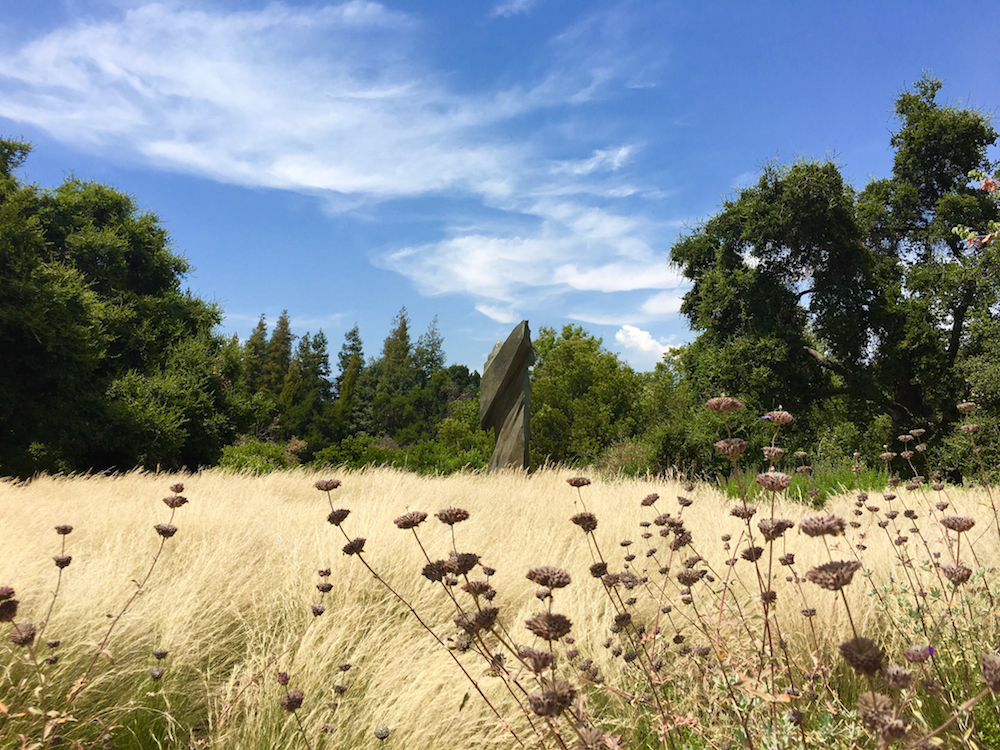 Explore Rancho Sanata Ana Botanic Garden while touring colleges in California with kids.