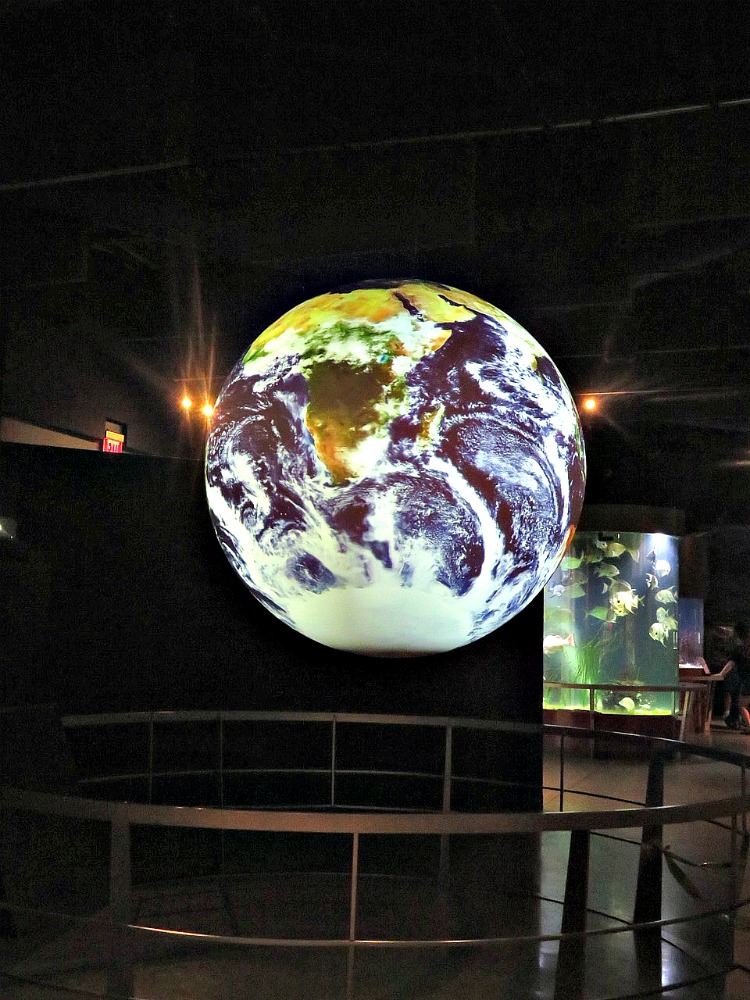Find rainy day fun in The Palm Beaches at the South Florida Science Center.