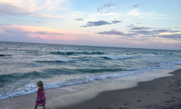 11 Reasons to Take Your Kids to The Palm Beaches