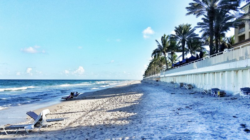 What to expect when visiting the palm beaches florida